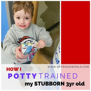 How I Potty Trained