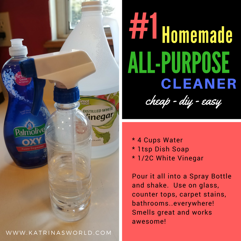 1 Homemade All-Purpose Cleaner